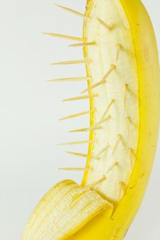 Free Banana With Spine Stock Photography - 19669282