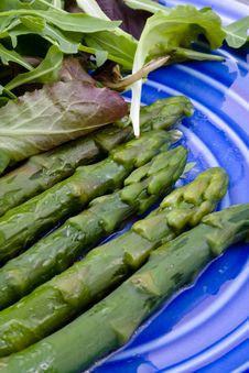 Free Boiled Green Asparagus Royalty Free Stock Photo - 19669495