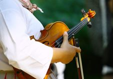 Free Violin Royalty Free Stock Image - 19669926