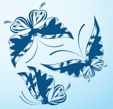 Free The Beautiful Butterfly Stock Photography - 19670622