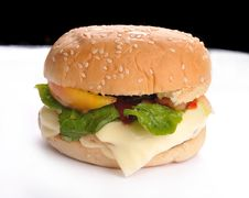 Free Burger Royalty Free Stock Photos - 19671798