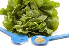Free Head Lettuce With Spice Mixture Royalty Free Stock Photography - 19672747