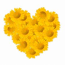 Free Sunflower Make Shap Hearth Stock Images - 19673024