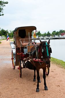 Free Horse And Carriage Stock Image - 19673591