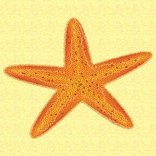 Free Starfish Royalty Free Stock Photo - 19674155
