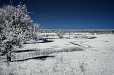 Free Landscape In The Infrared Royalty Free Stock Photo - 19674565