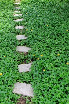 Free Garden Path Royalty Free Stock Photo - 19674735