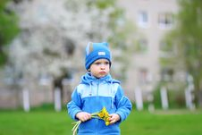 Free Child And Flowers Stock Photos - 19675263