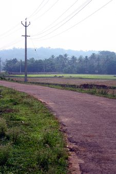 Free Rural Village Road Through Lush Green Paddy Field Royalty Free Stock Photos - 19676118