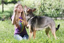 Free Teen Girl With Dog Royalty Free Stock Image - 19676436