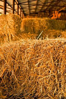 Free Hay Pile Stock Photo - 19678160