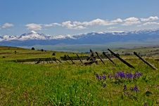 Free Wildflowers, Fencing, Valley And Mountains Stock Photos - 19678403