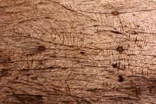 Free Wood Surface. Stock Photo - 19679010