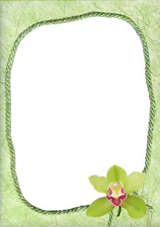 Free Oval Frame With Green Orchid Stock Photography - 19680302