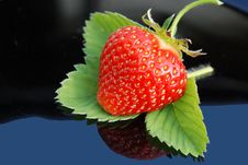 Free Strawberry Leaf On Black With A Green Background Stock Image - 19680661