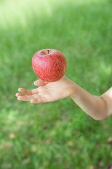 Catch An Apple Royalty Free Stock Photos