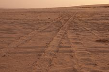 Free Tyre Tracks Across The Sand At Dusk Stock Images - 19682104