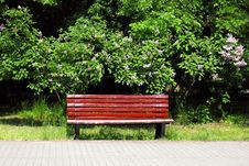 Free Bench In The Park Royalty Free Stock Photography - 19689527