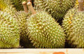 Free Durians At Market Royalty Free Stock Photography - 19693717