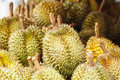 Free Durians At Market Stock Images - 19693774