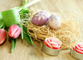 Free Easter Eggs, Tulips And Candles On Wooden Stock Photography - 19694102