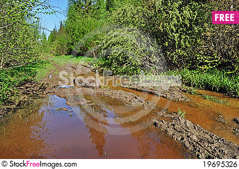 Free Mud Puddle On A Forest Road Royalty Free Stock Image - 19695326