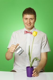 Free Parody Lover Man Nerd Watering Tulip Royalty Free Stock Image - 19690016