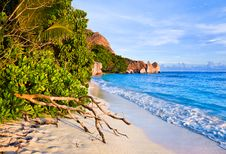 Free Tropical Beach Source D Argent At Seychelles Royalty Free Stock Photo - 19691185