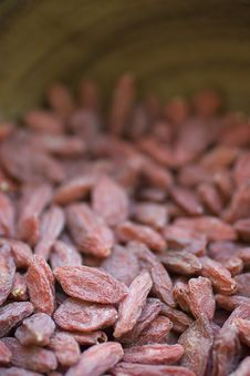 Free Goji Berries Stock Image - 19691591