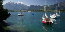 Free Lake Thun Royalty Free Stock Image - 19691786