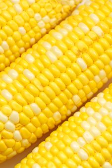 Free Corn Close-up. Stock Images - 19692294