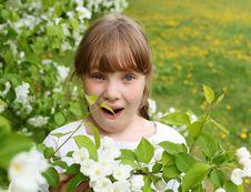 Free Little Girl In Spring Park Stock Image - 19693831