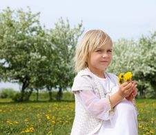 Free Little Girl In Spring Park Royalty Free Stock Photos - 19693848