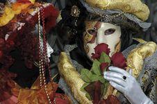 Free Venetian Carnival Mask Stock Photo - 19695120