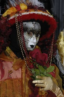 Free Venetian Carnival Mask Stock Images - 19695134