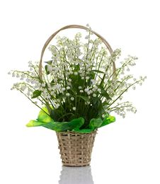 Free Bouquet  Lily Of The Valley. Royalty Free Stock Photography - 19696167