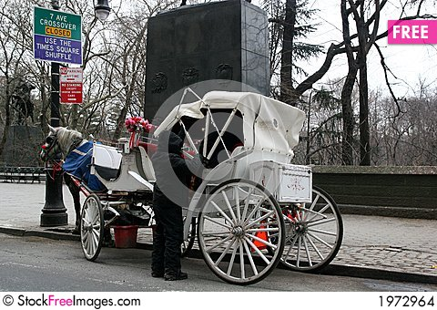 Free Carriage Driver In Winter Stock Images - 1972964