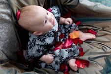 Free Baby With Petals Royalty Free Stock Image - 1972476