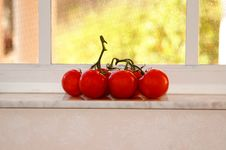 Free Tomatoes In Window Royalty Free Stock Photography - 1973287