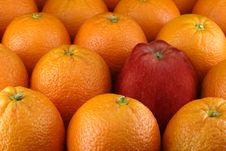 Free Apple Between Oranges Stock Photos - 1973463