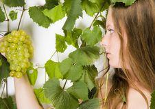 Free Beautiful Green Grape Stock Image - 1974511