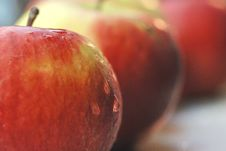 Free Apples Row Stock Photography - 1974692