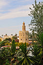 Free Seville - The Golden Tower Royalty Free Stock Images - 19705159