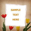 Free Tulip And Old Paper For Text And Background Stock Photography - 19706432