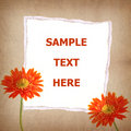 Free Gerbera Flower And Old Paper For Text And Backgrou Royalty Free Stock Photography - 19706697