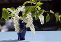 Free Small Spring Bouquet Stock Photo - 19707080