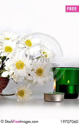Free Simple White Daisies Stock Photo - 19707060