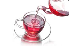 Free Tea Stock Image - 19700641