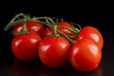 Free Tomatoes Royalty Free Stock Photos - 19701678