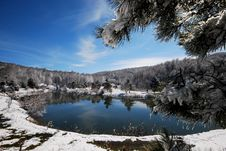 Free Reflections On The Lake In Winter And Royalty Free Stock Photos - 19701948